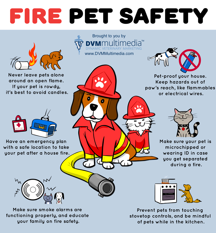 Pet fire safety tips infographic for Fire prevention tips for home