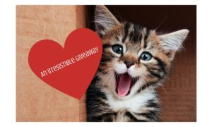Product Giveaway:  Irresistibles Cat Treats