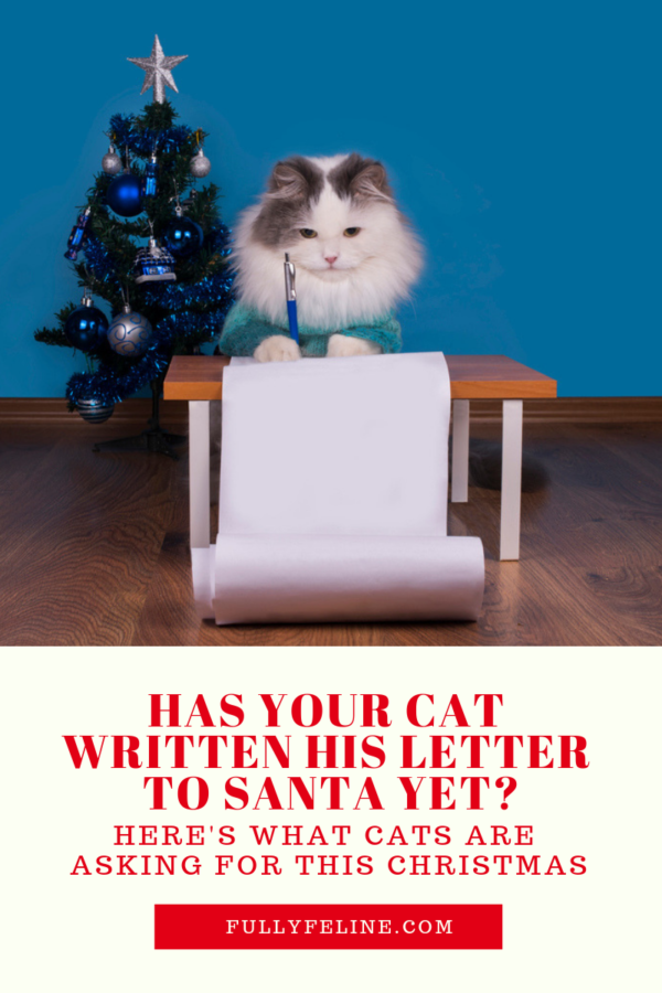 cat letters to santa