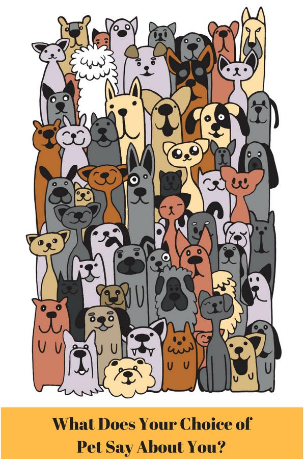 human-pet connection